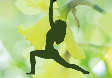 Online yogalessen om flexibel de lente door te komen.