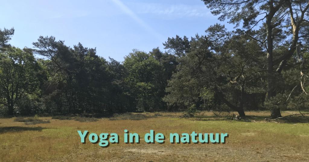 Yoga in de natuur, in Nationaal park Drentse Aa, in het bos