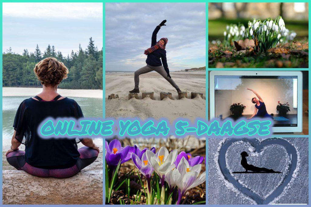 Online yoga 5-daagse challenge Yoga Flow Zuidlaren